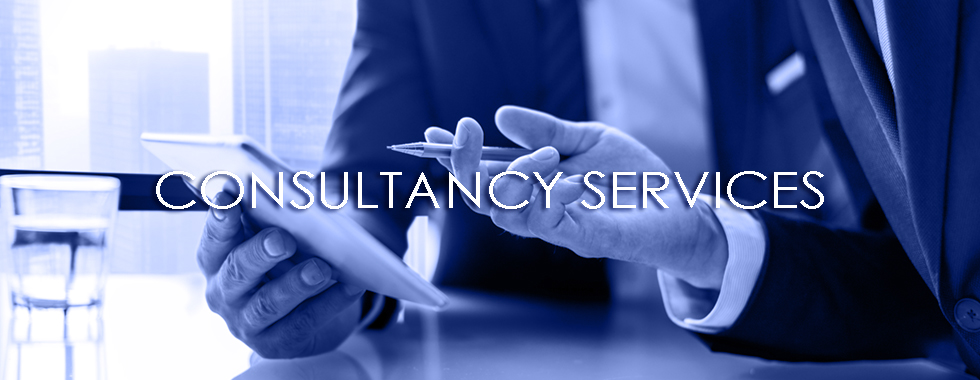 Consulting Services - Softnika Solutions